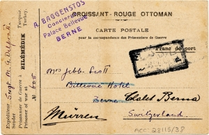 Croissant rouge card to berne
