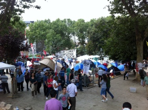 Small section of Gezi, 12 June 2013